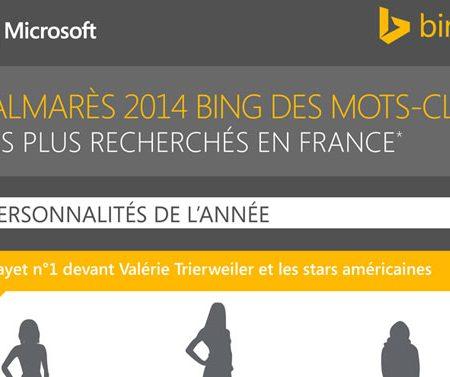 Infographie : Bing dévoile les mots-clés les plus recherchés en 2014 en France !