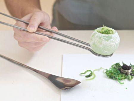 Fungi Mutarium : cultiver un champignon comestible pour recycler le plastique !