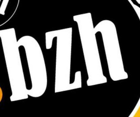 SEO local : les noms de domaine en .bzh (Bretagne) disponibles pour tous !