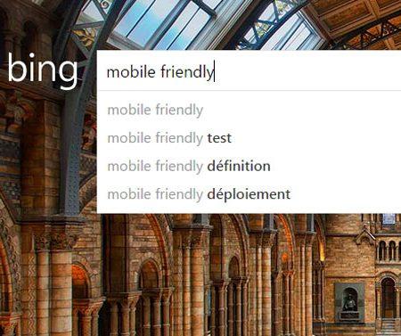 Bing s'apprête à déployer sa mise à jour Mobile-Friendly !
