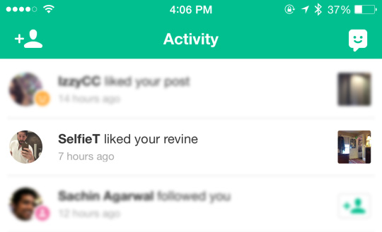 Revine activity Vine