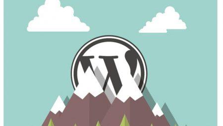 10 erreurs fréquentes à ne plus commettre avec WordPress (Infographie)