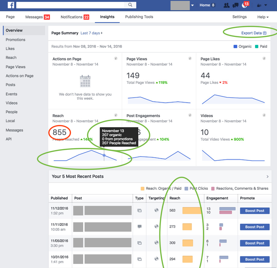 bug facebook page insights