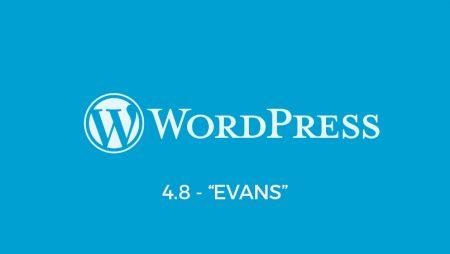 WordPress 4.8 «Evans» est disponible : les principales nouveautés à découvrir !