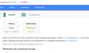 nouveau google page speed insights