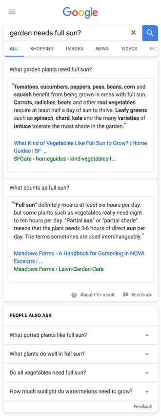 multifaceted featured snippets exemple