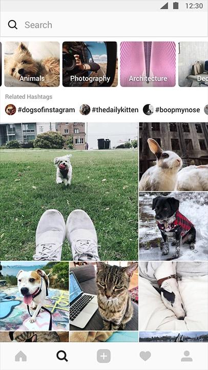 nouvelle section explore instagram