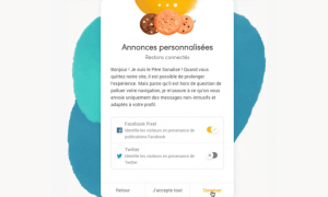 gestion cookies internet