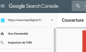 bug search console couverture index