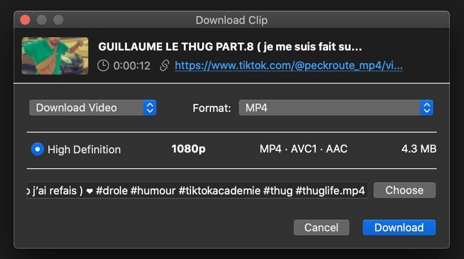 télécharger vidéo TikTok 4k downloader