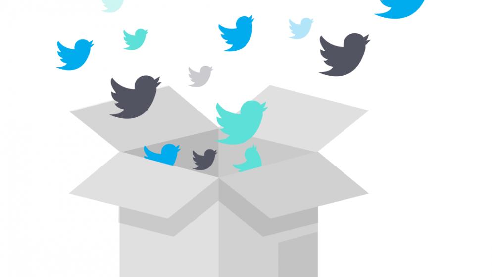 Stories Twitter : comment créer des Fleets efficaces ? Astuces & Conseils