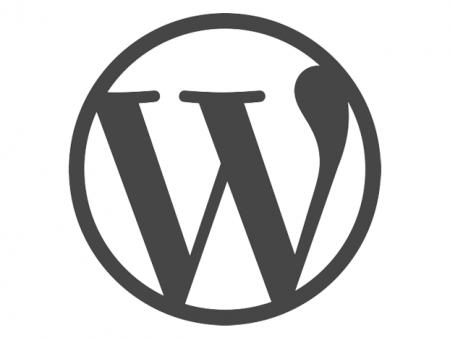 Comment importer / exporter les paramètres de personnalisation d'un thème WordPress ?